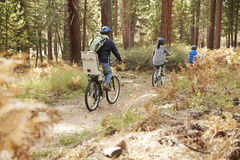 Family cycling through a forest, back view Royalty Free Stock Image