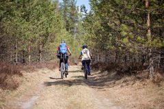 Family cycling outdoors, spring forest. Royalty Free Stock Photos
