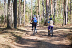 Family cycling outdoors, spring forest. Royalty Free Stock Photo