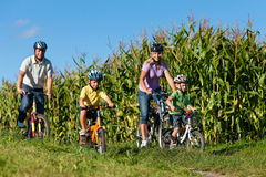 Family is cycling in summer. Father, mother and two sons royalty free stock images