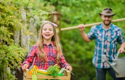 Family dad and daughter little girl planting plants. Day at farm. Popular in garden care. Planting flowers stock photo