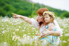 Family  in daisy field Royalty Free Stock Photography