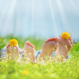 Family with dandelion  flowers lying on green grass in sunny day Royalty Free Stock Photo