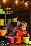 Family day. Greenhouse. bearded man and little boy child love nature. Flower care watering. Soil fertilizers. Father and royalty free stock image