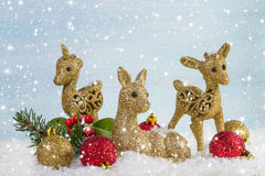 The family of deer with branch fir and holly leaves in the snow. Royalty Free Stock Image