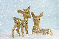 Family of deer in the snow. Royalty Free Stock Image