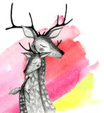 A family of deers on a watercolor background. Pencil drawing deers mom, dad and baby-fawn on a watercolor background Stock Images