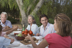 Family Dining In Garden Stock Image