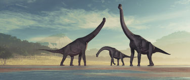 Family of dinosaurs. Brachiosaurus. This is a 3d render illustration Royalty Free Stock Photos