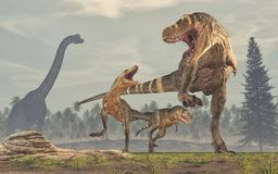 Family of dinosaurs - tyrannosaurus rex. Royalty Free Stock Photo
