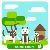 Family dog on the background of trees and sky Royalty Free Stock Images
