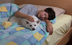 Family dog being petted by teen girl on bed Stock Image