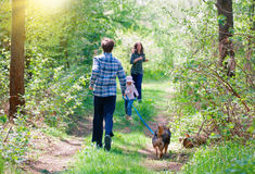 Family with dog in the forest. Stock Image