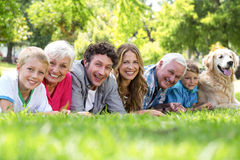 Family with dog lying on the grass in the park Stock Photography