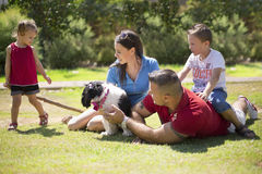 Family with a dog at the park. Beautiful family playing at the park with their dog, curious about what the girl is doing Stock Photo