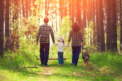 Family with dog walking in the forest. Back to camera Royalty Free Stock Photo