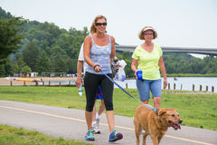Family and Dog walking for a 5K at creve coure Park St Louis, Mo. stock photography