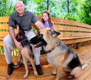 Family with Dogs. Father and daughter relaxing outdoors with family dogs royalty free stock image