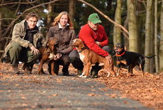 Family with dogs outdoors stock photo