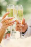 Family drinking wedding champagne from high Royalty Free Stock Photo