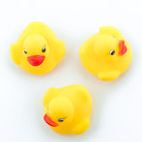 Family duck toy stock images