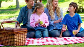 Family eating picnic Stock Photography
