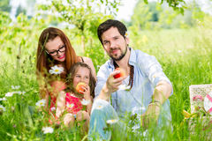 Family eating in summer meadow sitting on grass. Having a picnic stock image