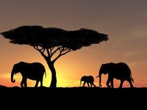 Family of elephant stock illustration