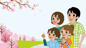 Family enjoy the Cherry blossoms viewing Royalty Free Stock Photo