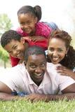 Family Enjoying Day In Park Stock Images
