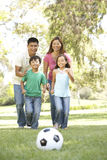 Family Enjoying Day In Park royalty free stock photography