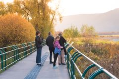 Family enjoying marsh boardwalk and protected wetland habitat royalty free stock photos