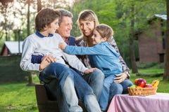 Family Enjoying Picnic In Park Stock Photos