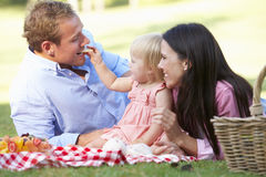 Family Enjoying Picnic Together Royalty Free Stock Images