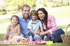 Family Enjoying Picnic Together Royalty Free Stock Photography