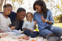 Family Enjoying Summer Picnic In Park Together stock photos