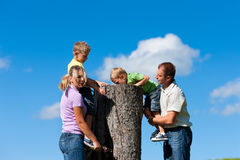Family on excursion in summer. Happy family on excursion in summer - they discovered a trunk stock photo