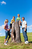Family on excursion in summer. Happy family on excursion in summer - they discovered a trunk stock photos