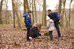Family exploring nature together in a wood royalty free stock photography