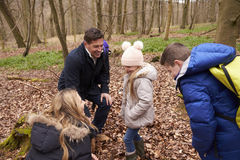 Family exploring nature together in a wood, close up Stock Image