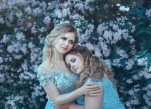 Family fairy photo shoot. Two blond women with wavy hair in luxurious, fabulous, blue dresses against the backdrop of Stock Photos