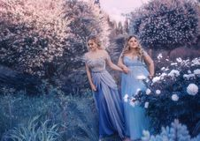 Family fairy photo shoot. Two blond women with wavy hair in luxurious, fabulous, blue dresses against the backdrop of Royalty Free Stock Images