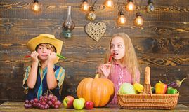 Family farm. Children presenting farm harvest wooden background. Reasons why every child should experience farming. Farm. Market. Siblings having fun. Kids royalty free stock photo