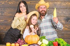 Family farm concept. Family farmers with harvest wooden background. Parents and daughter celebrate autumn harvest royalty free stock photography