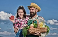 Family farm concept. Only organic and fresh harvest. Man bearded rustic farmer with kid. Farmer family homegrown harvest. Father and daughter hold basket stock images
