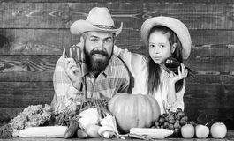 Family farm festival concept. Family father farmer gardener with daughter near harvest vegetables. Man bearded rustic stock photography