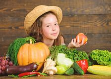 Family farm festival concept. Traditional autumnal fest. Farm activities for kids. Girl kid farm market with fall royalty free stock photo