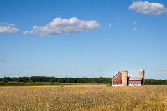 Family Farm Scene with Copy Space. Classic rural farm scene with a weathered red barn, silos, golden crops and a blue sky.  Fluffy clouds and copy space in sky Stock Images