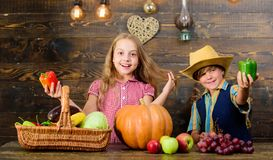 Family farm. Siblings having fun. Children presenting farm harvest wooden background. Farm market. Kids farmers girl boy. Vegetables harvest. Farming teaches stock images
