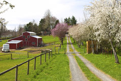 Family farm in rural Oregon. Stock Image